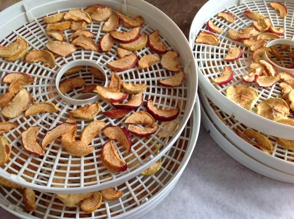 chipsy jabłkowe Katarzyna Gurbacka