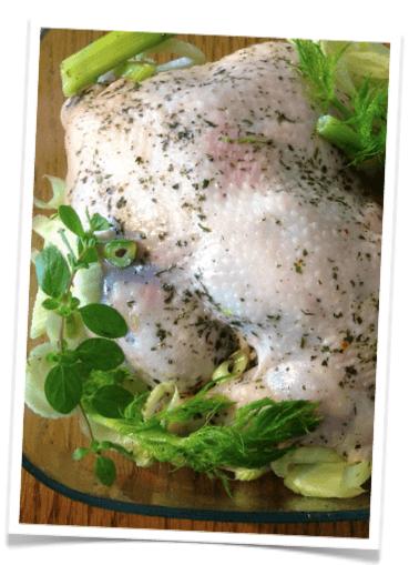 kurczak z koprem