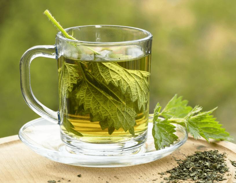 Oto najzdrowsza herbata świata: czystek i imbir. Sprawdź przepis!