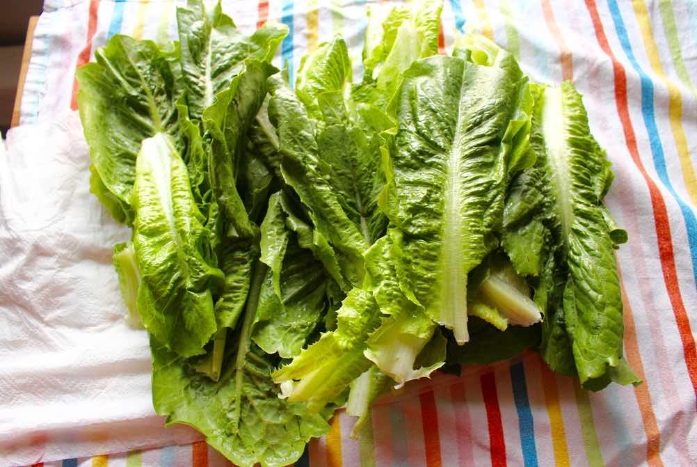 jak przechowac salate