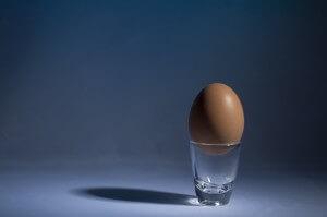 jajko wartości odżywcze