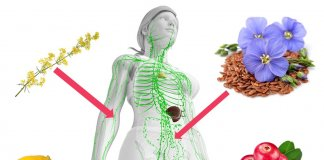 nadmiar wody w organizmie oczyszczanie układu limfatycznego